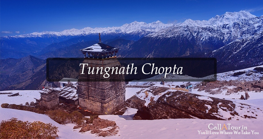 chopta camping packages